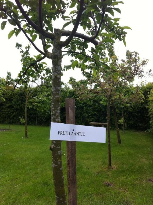 eco-fruitlaantje